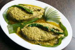 Elisher tela jhal – A Bengali Fish Dish. Elisher tela jhal is a fish dish from Bengal in India Royalty Free Stock Images
