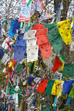 ELISTA, RUSSIA. Hiymorin, color Buddhist checkboxes with a prayer are hung out on a tree. ELISTA, RUSSIA - APRIL 19, 2017: Hiymorin, color Buddhist checkboxes Royalty Free Stock Photo