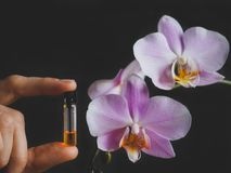 Arabian oud attar perfume or agarwood oil fragrances in mini bottles. Elite Arab perfume in a crystal bottle. Attar Oud oil Stock Image