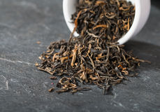 Elite black tea Stock Photography