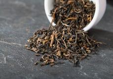Elite black tea stock photography