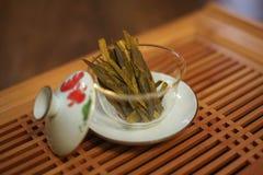 Elite green chinese tea stock image