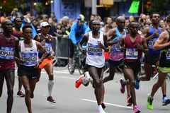 2017 NYC Marathon - Mens Elite Stock Photo