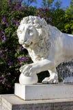 Żeliwny lew w parku Obraz Stock