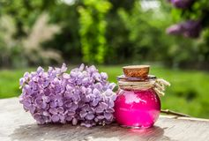 Elixir of life. Love drink. Love potion. Potion of Life. Lilac Essential Oil stock image