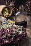 Elixirdryck av örter Royaltyfri Fotografi