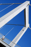 Elizabeth bridge 6. Royalty Free Stock Photography