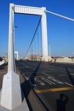 Elizabeth bridge 9. There is Elizabeth bridge in Budapest (Hungary royalty free stock images