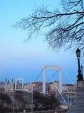 Elizabeth Bridge royalty free stock photo