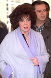 Elizabeth Taylor Royaltyfria Bilder