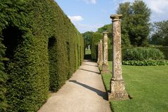 Garden pathway and sculptured hedge Stock Image