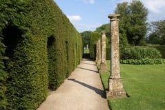 Garden pathway and sculptured hedge Stock Image