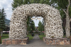 Elk Antler Arches Stock Image