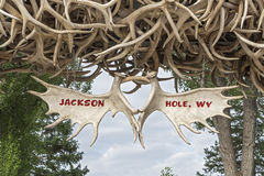 Elk Antler Arches royalty free stock photo