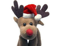 Elk in a christmas cap Royalty Free Stock Image