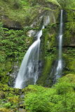 Elk Creek Falls, Oregon. Beautiful Elk Creek Falls in Oregon with lush green vegetation Royalty Free Stock Images