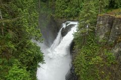 Elk Falls Provincial Park Vancouver Island Lush Rainforest and Waterfall. Waterfall in Elk Falls Provincial Park on Vancouver Island British Columbia Canada stock image