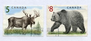 Elk and grizzly on canadian post stamps Stock Photo