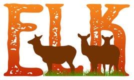 Elk Stock Images