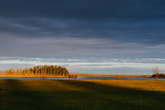 Elk Island National Park Stock Photography
