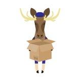 Elk with open box Stock Photo