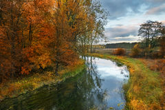 Elk river in autumn Royalty Free Stock Photo