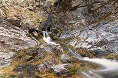 Elk River Stock Image