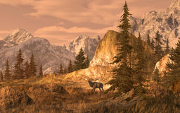 Elk in the Rocky Mountains. 15x24 painting of an elk in the Rocky Mountain high country Royalty Free Stock Images