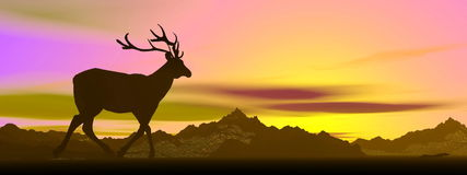 Elk shadow by sunset - 3D render Royalty Free Stock Images