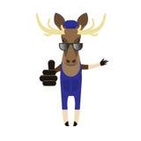 Elk in sunglasses Stock Photo