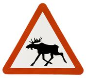 Elk Zone Warning Sign Royalty Free Stock Photography