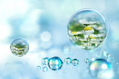 Elke regendruppel heeft binnen de lente Stock Fotografie