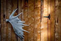 The elkhorn. Detail of a the elkhorn on the facade of a cottage Royalty Free Stock Images