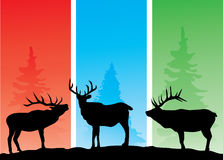 Elks. Illustration of background with deer and trees Stock Images