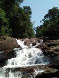 Ella d'anagimala de cascade à la forêt de kanneliya photographie stock