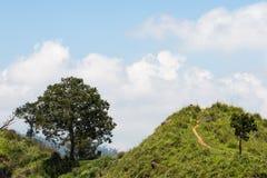 Ella Landscape Sri Lanka Royaltyfria Bilder