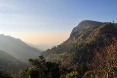 Ella Rock in Sri Lanka. Ella Rock mountain in the tea plantation hill region of central Sri Lanka Stock Photos