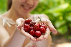 Ella sostiene un puñado de cerezas rojas Imagen de archivo