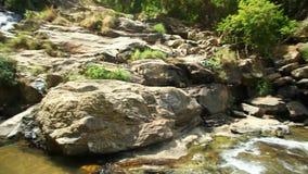 ELLA, SRI LANKA - MÄRZ 2014: Ansicht von den lokalen Jungen, die in Ravana genießen und baden, fällt in Ella Es ordnet z.Z. als e stock video footage