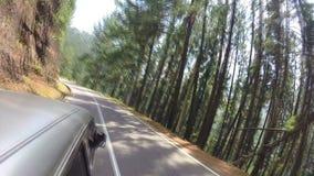 ELLA, SRI LANKA - MARCH 2014: Timelapse of sri lankan tropical landscape from tuktuk. stock video footage