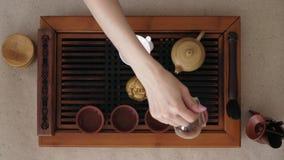 Ella vertió suavemente la situación del té del puer en las tazas de la tabla La visi?n desde la tapa metrajes