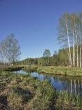 Ellbach hed på våren arkivbild