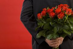 Elle aime des roses Image stock