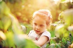 Elle est enfant du ` s de nature Photographie stock