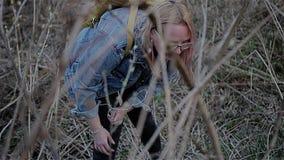 Elle trouve dans la terre en friche urbaine de l'herbe sèche parmi les belles fleurs jaunes Découverte rare même banque de vidéos