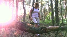 Elle voyage par les bois au coucher du soleil banque de vidéos
