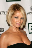 Ellen Barkin Royalty Free Stock Photo