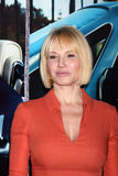 Ellen Barkin Stock Photography
