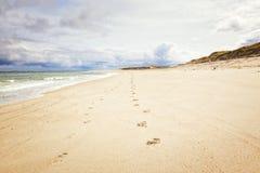 Ellenbogen beach at German North Sea island Sylt, Royalty Free Stock Photo