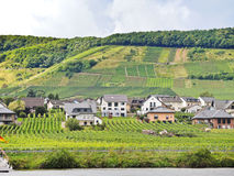 Ellenz Poltersdorf村庄和葡萄园摩泽尔的 库存图片